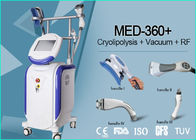 China Vertical 4 Handles Cryolipolysis Machine , Non Surgical Body Contouring Machine company